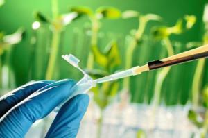 Biotechnologies-2